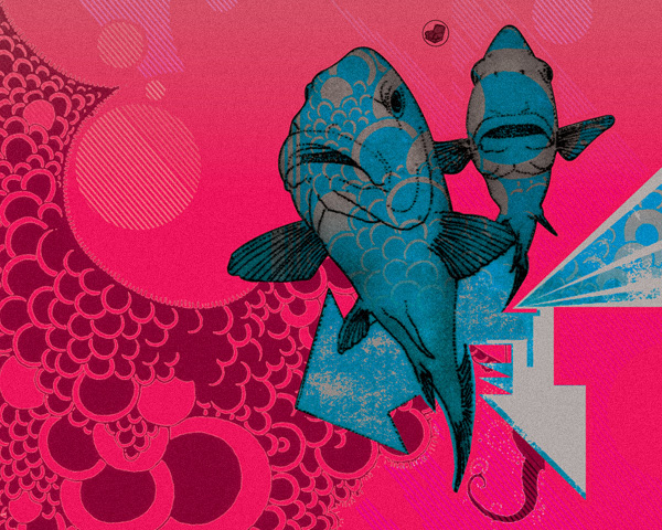 fish-illustration-album-poster-design