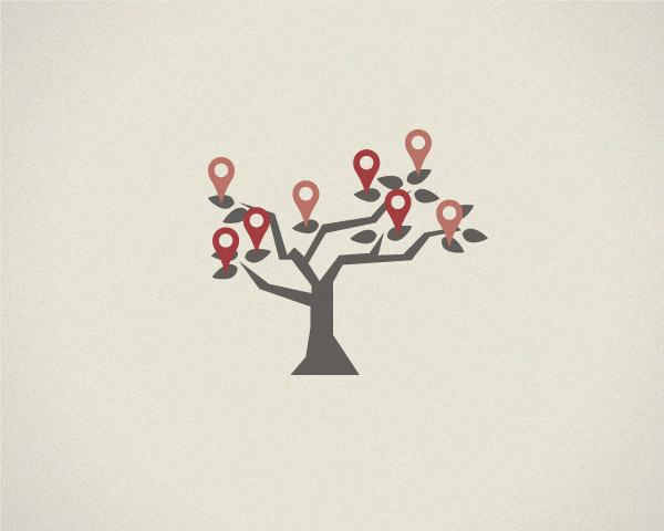 USB-ED-Brochure-tree-illustration